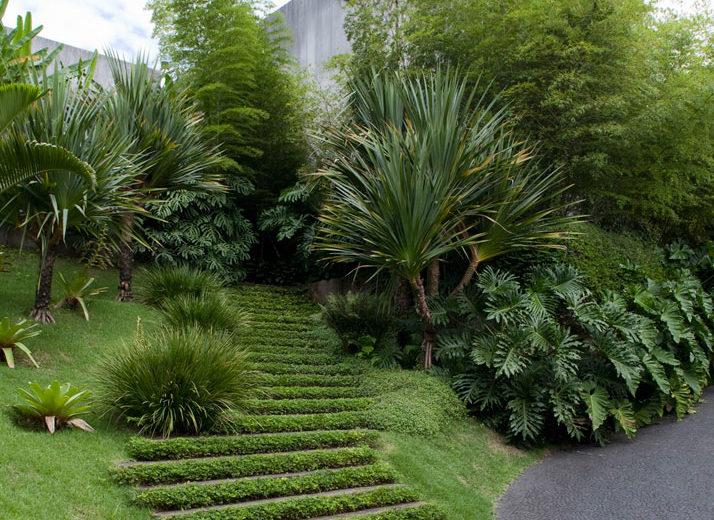 Покупаем участок: садовое товарищество (с/т) или сельский поселок